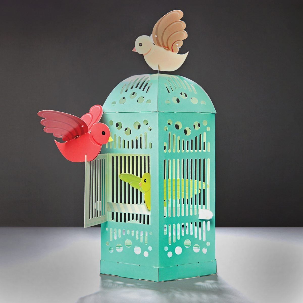 Build your own Birdcage
