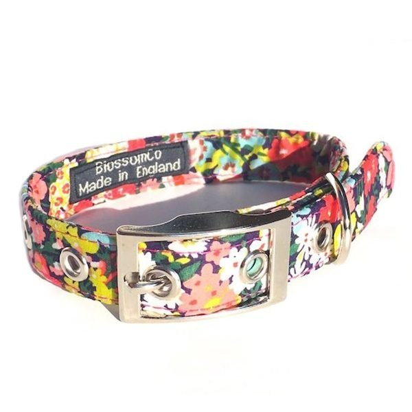 Thorpe Dog Collar