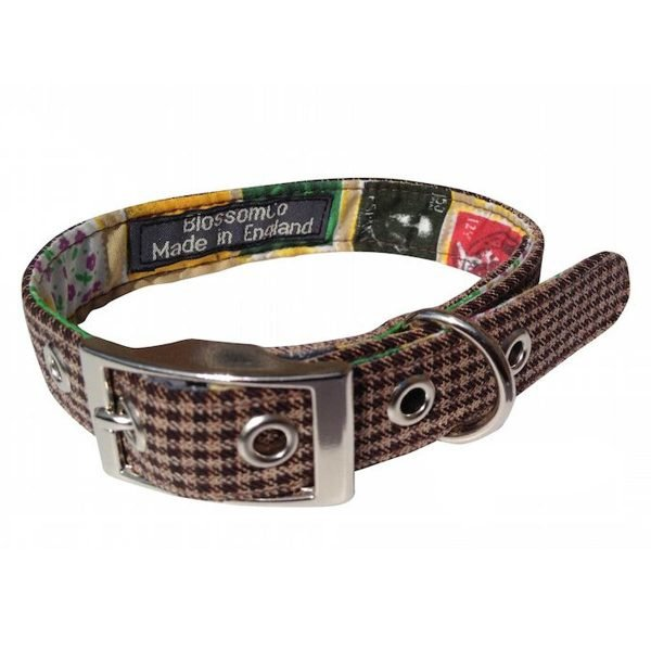 Wilbur Dog Collar